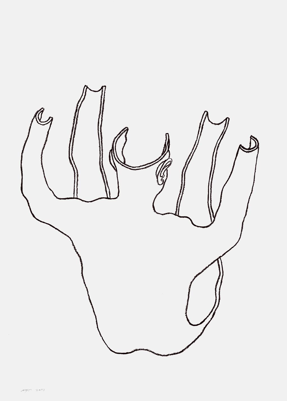 piel-dibujo