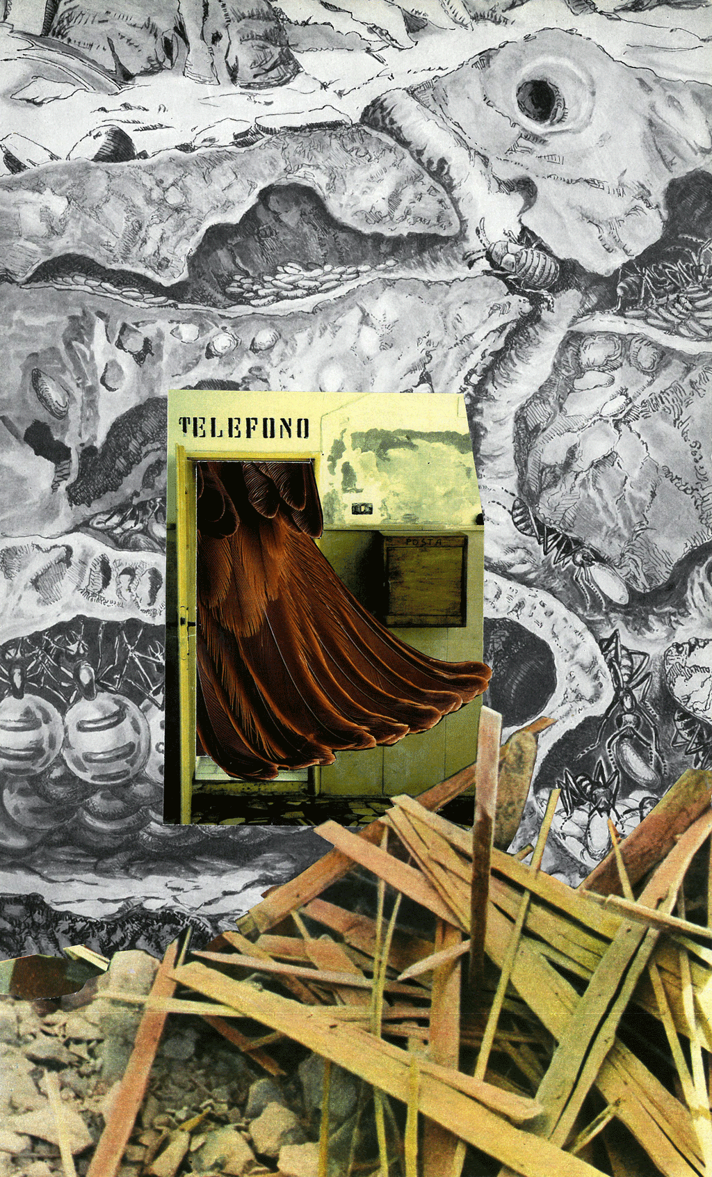 collage-sin-titulo